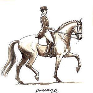 passage   Dressage, Dressage horses, Horse girl problems