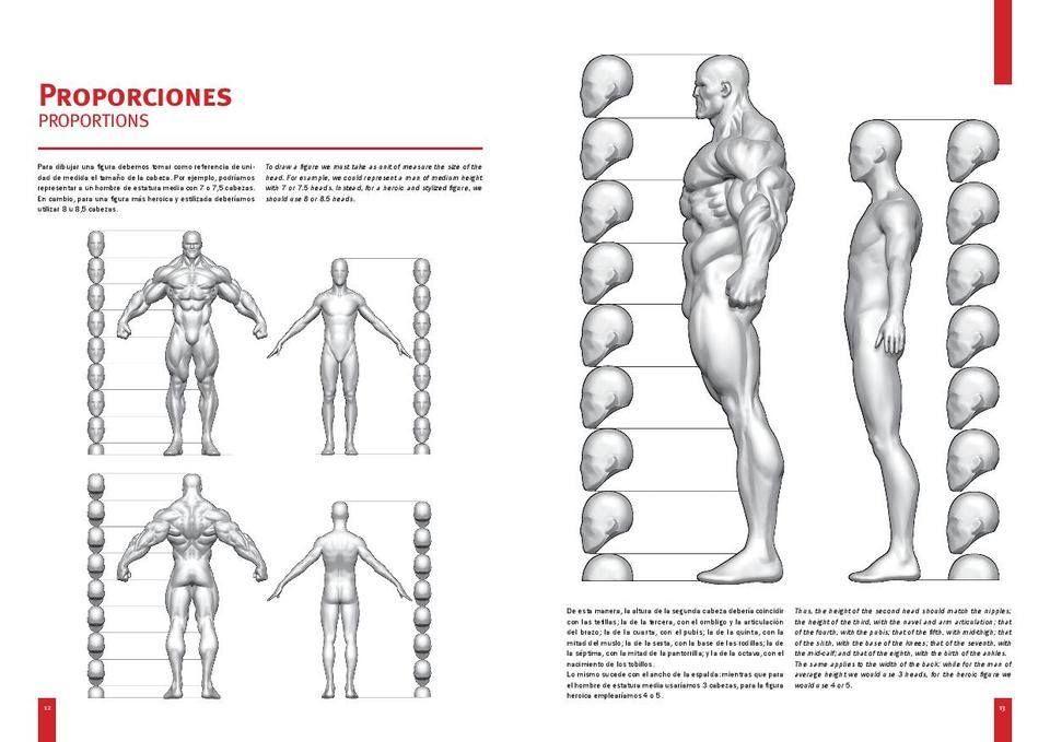 Libro de Anatomia de Superheroes por Olivetti y Canale - Taringa!