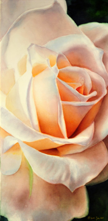 blanc rose rose peinture l 39 aquarelle peinture originale d 39 une rose blanche par doris joa. Black Bedroom Furniture Sets. Home Design Ideas
