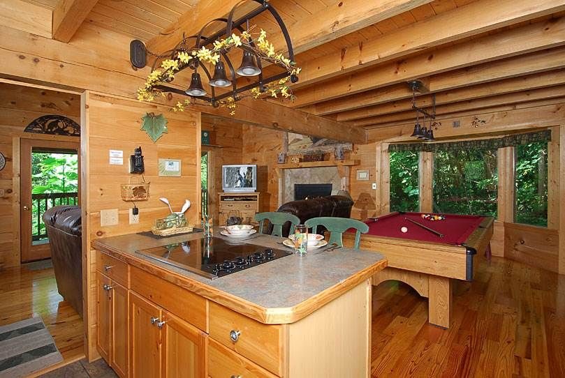 Hosted Site Search Discovery For Companies Of All Sizes Cabin Cabin Rentals Pet Friendly Cabins