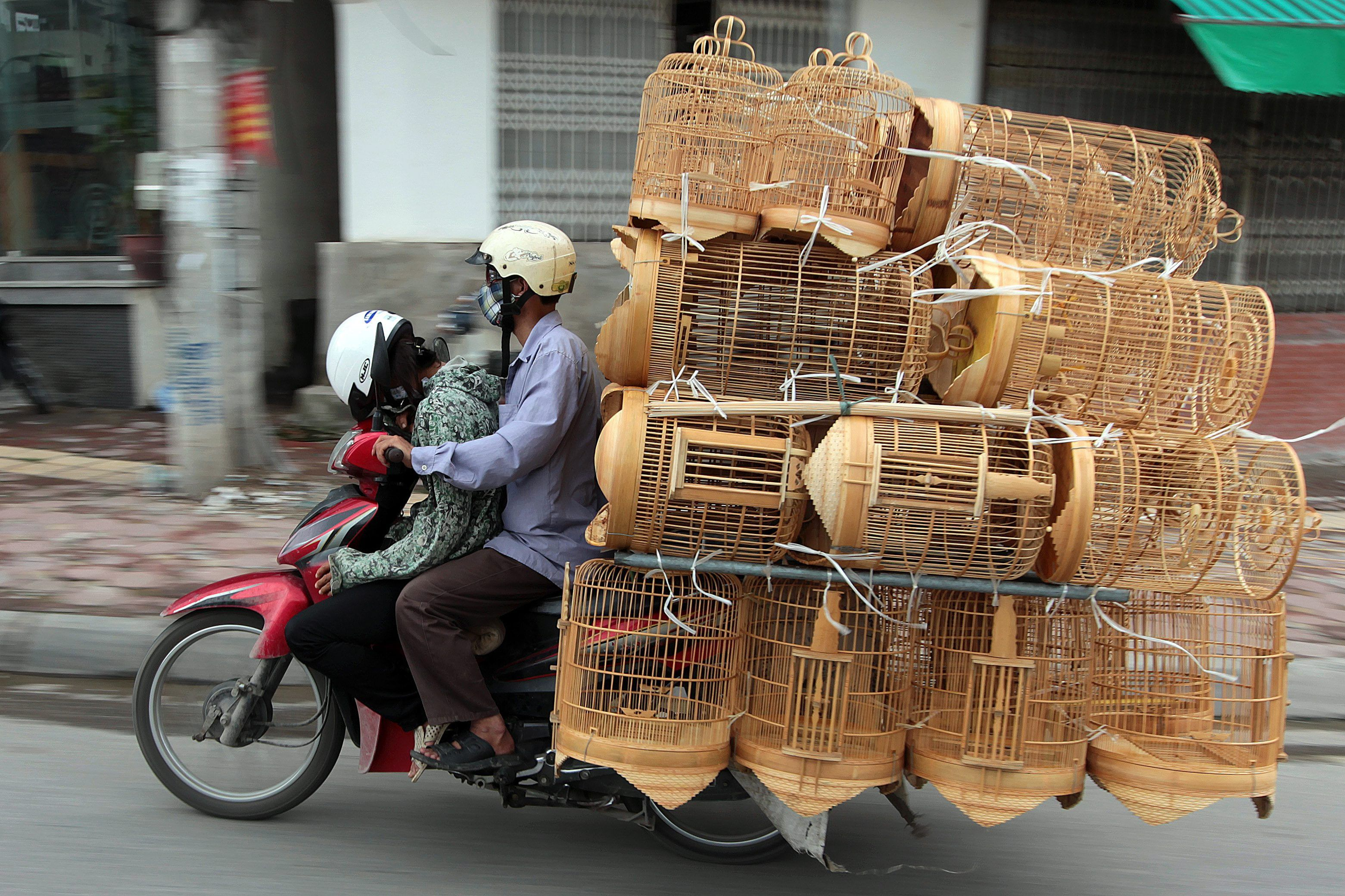 A Man Rides His Motorcycle Loaded With Bird Cages Through A Street In Hanoi Vietnam On May 23 2012 In The Fast Developing Countr Camboya Transporte Vietnam