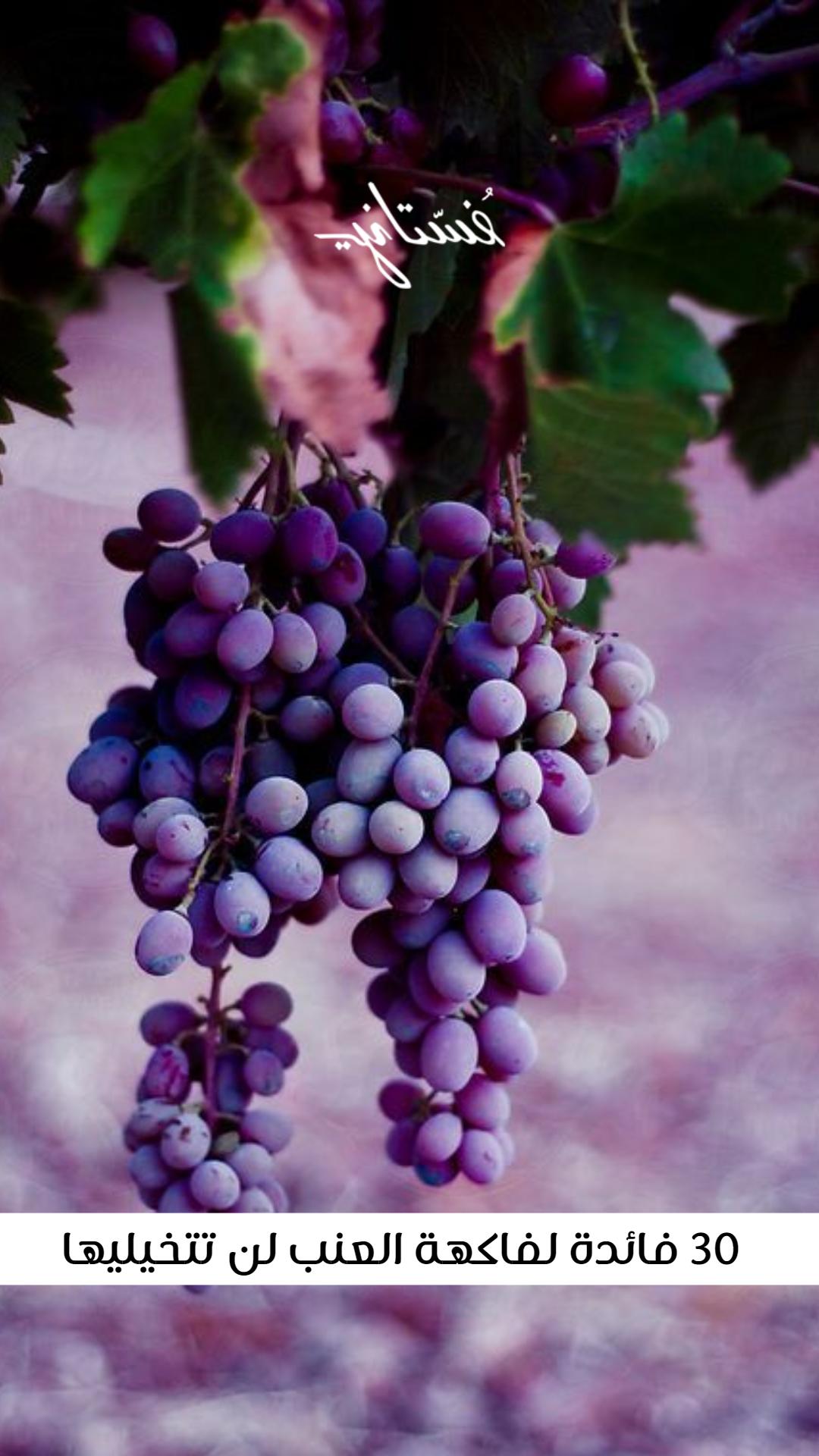 فوائد العنب للصحة والبشرة والشعر ٣٠ فائدة للعنب لن تتوقعيها Purple Grapes Grapes Fruit Photography
