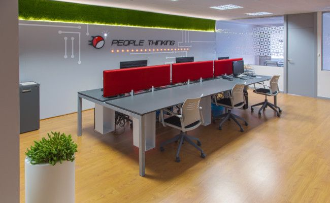 Oficinas de empresa de servicios informáticos. Sala de programación. Panel con vinilos. Revestimiento con césped artificial. Iluminación con tira de led.