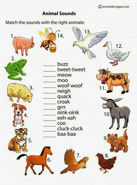 Смешное животное рисунок с описанием на английском языке 3 класс