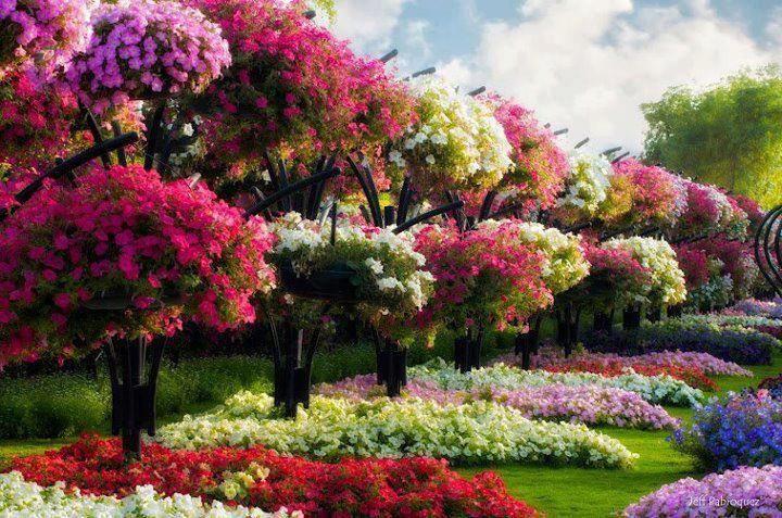 i saidcan you EVER have too many flowers\u003c3 JARDINES - paisajes jardines