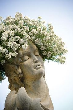 head pot - Google Search