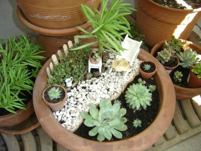 atelier stage jardin miniature jardin miniature miniature garden plantes pinterest. Black Bedroom Furniture Sets. Home Design Ideas