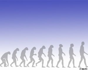Human Evolution Powerpoint Template Is This Human Evolution Ppt