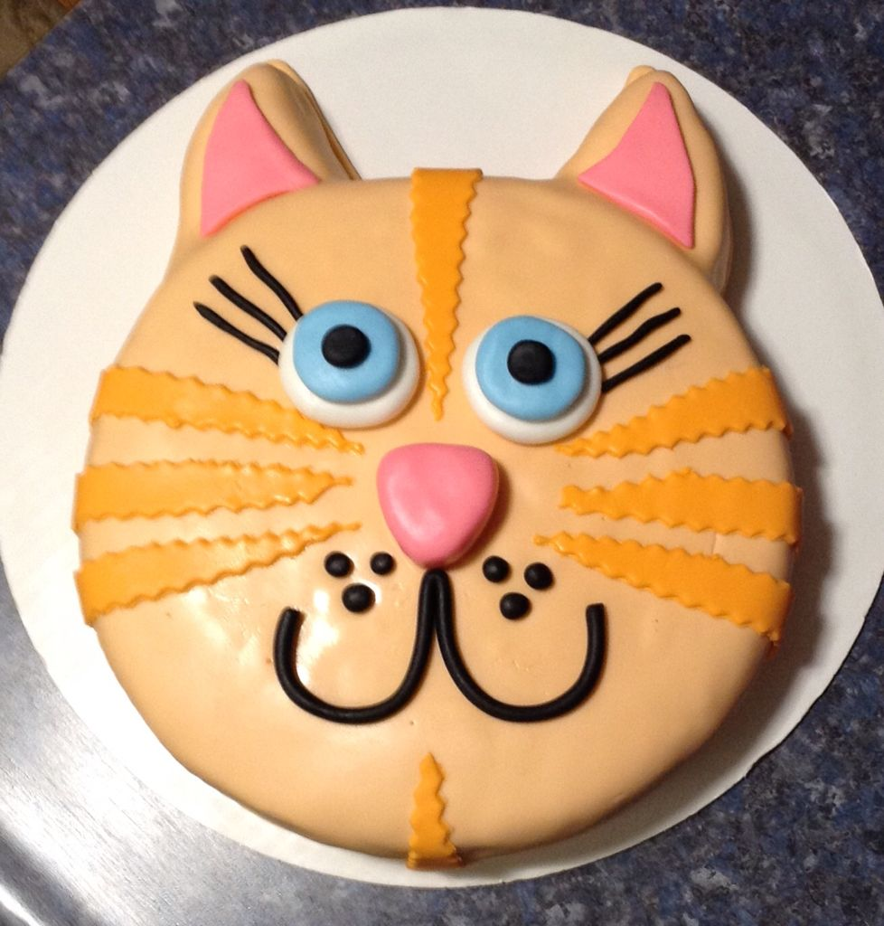 An Orange Cat Cake 8 18 16 For Delivery Tomorrow