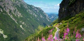 The Roztoka Valley, the Tatra Mountains, Poland - via ArunasWorld / #Beautiful Places / Google+