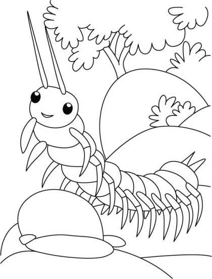 Centipede trying ramp walk coloring pages | Download Free Centipede ...