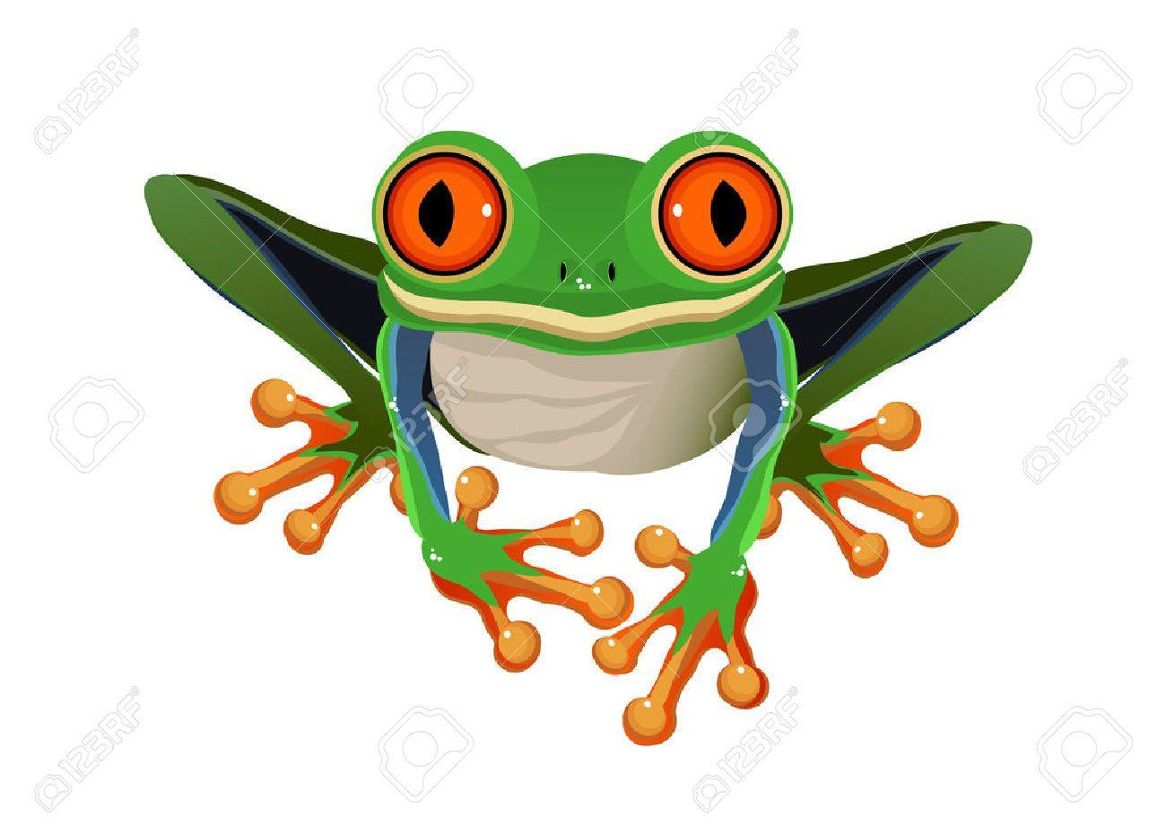 tree frog cartoon google search characters cartoon animals rh pinterest com Pink Tree Frog cartoon green tree frog