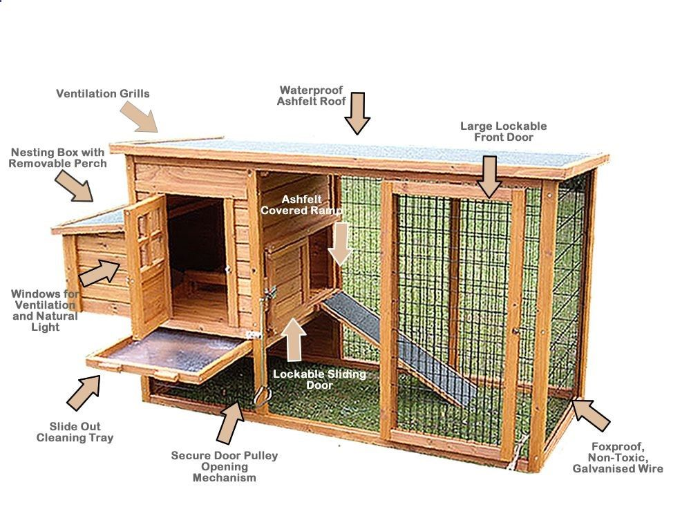 Learn How To Build En Coops Or A Hen House With Easy Diy Coop Building