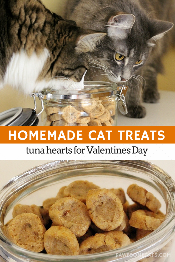Tuna flavoured cat treats are easy to make with just a few