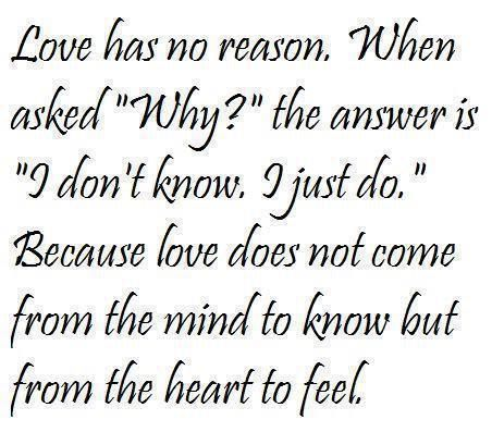 Love Has No Reason Quotes Love Is Good But Sometimes It Hurts