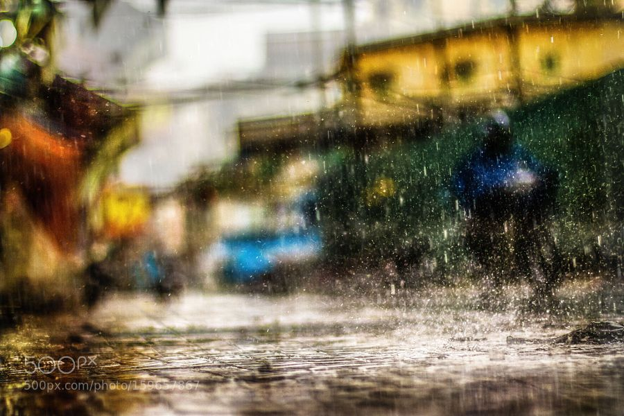 Rainy day by lenguyen-photographer