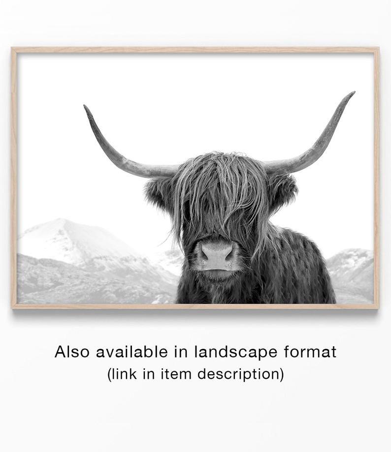 Highland Cow Art, Schwarzweißdruck, Tierfotografie, Highland Cow Print, Animal Art Print, Kuhfoto, Bull Print