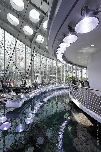 California Academy Of Sciences Architecture And Interior Design
