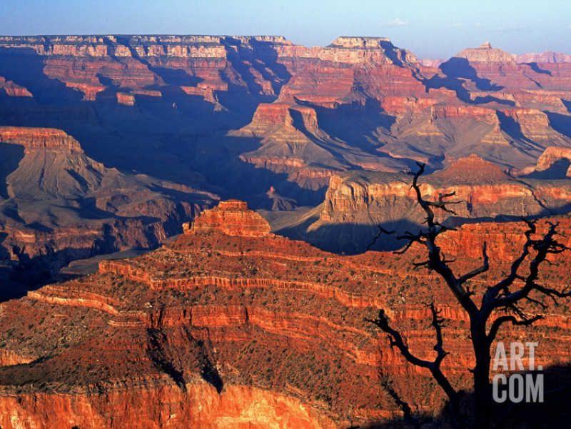 Grand Canyon from Toroweap Point, Sedona, AZ.