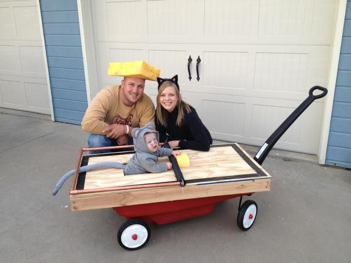 Cat Mouse Cheese family costumes for Halloween!  sc 1 st  Pinterest & Cat Mouse Cheese family costumes for Halloween! | Halloween ...