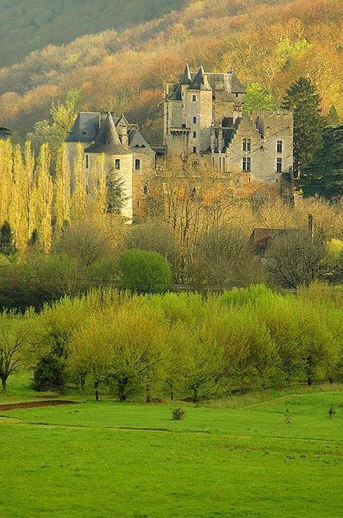 ~Château de Fayrac,  Castelnaud-la-Chapelle, Dordogne, Aquitaine, France~
