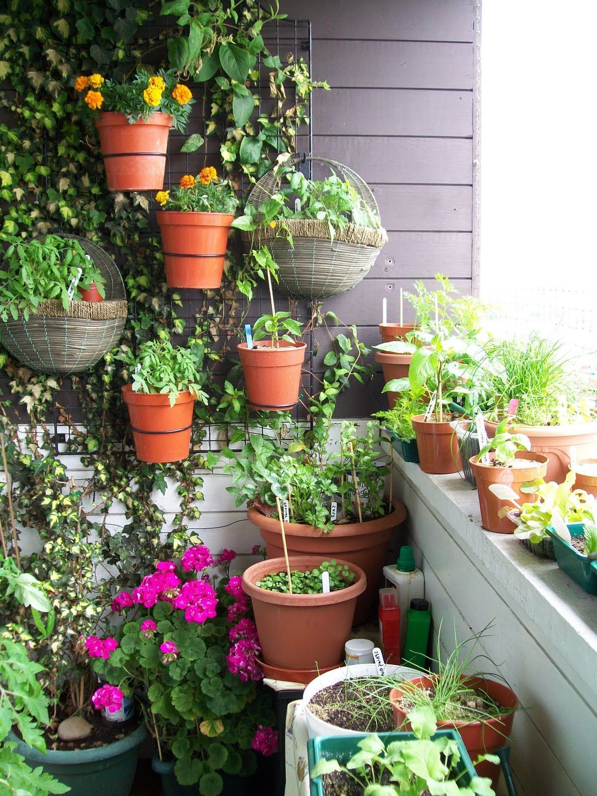 Beautiful small terrace gardens - Garage Beautiful Small Terrace Garden Ideas Good Terrace Garden With Wall Planting