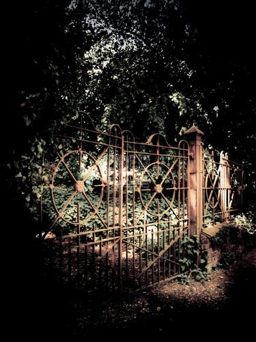 Old Rustic Wrought Iron Fence Wrought Iron Fences Iron Fence