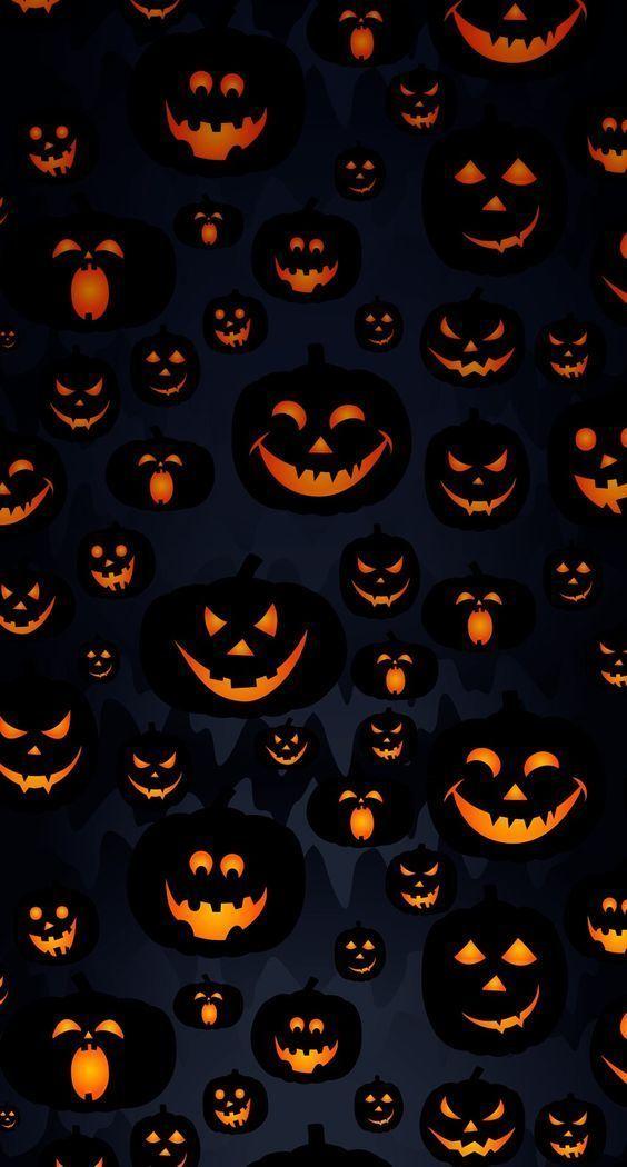 pumpkin, autumn, and fall image Halloween Pinterest Fall - hello kitty halloween decorations