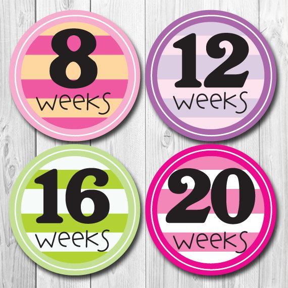 Weekly Pregnancy Stickers Belly Stickers Baby by ChevronSmiles, $8.99