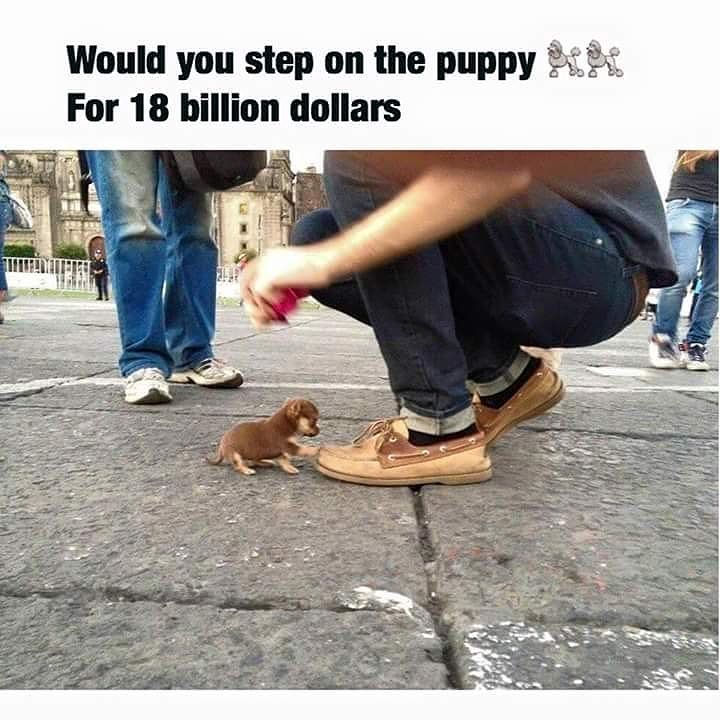 Would you?! #CurtainsTalk