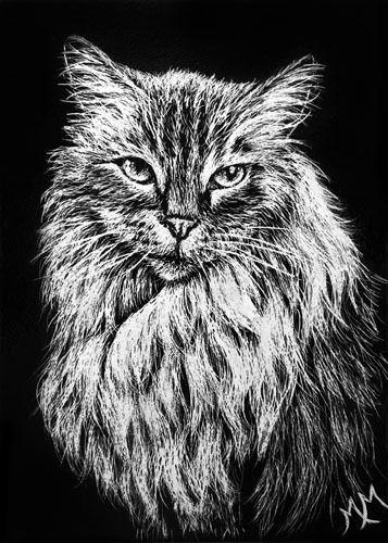 ORIGINAL ACEO Scratchboard Art ROAR Cat Kitty Feline Animal Pet Scratch