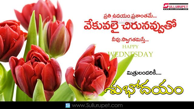 Telugu Good Morning Quotes Wshes For Whatsapp Life Facebook Images Inspirational Thoughts Happy Fathers Day Message Fathers Day Wishes Happy Father Day Quotes