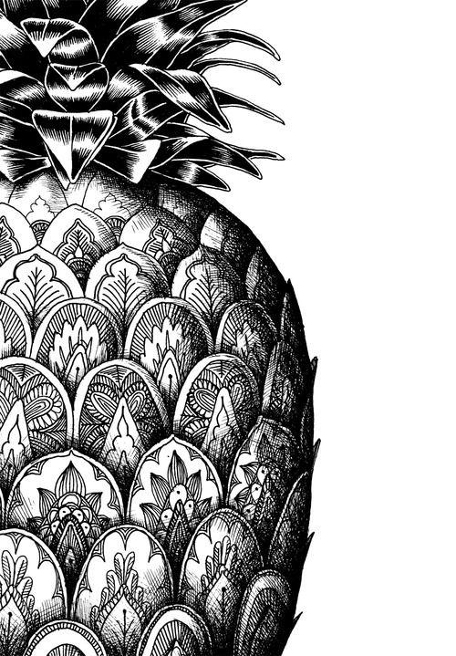 Fond D Ecran Ananas Dessin Noir Et Blanc Iphone Dessin Noir Et Blanc Mouton Dessin Dessins Zentangle
