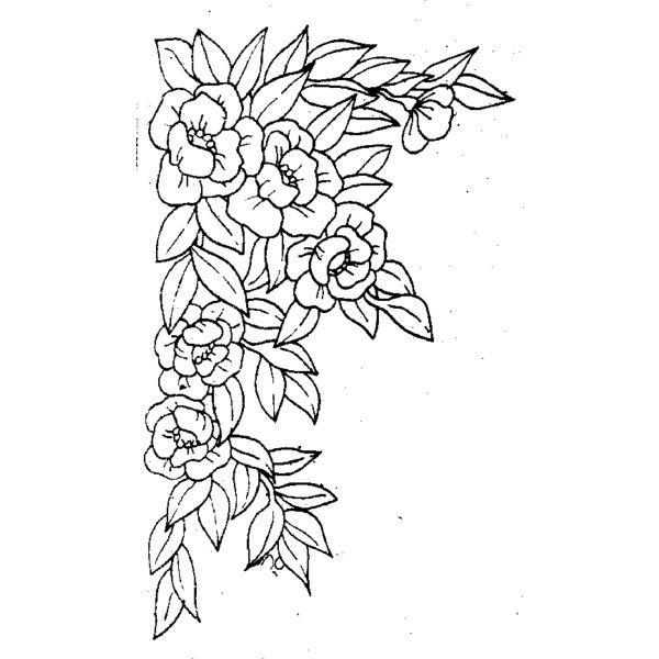 Polyvore Flower Sketches Outline Drawings Flower Background Design