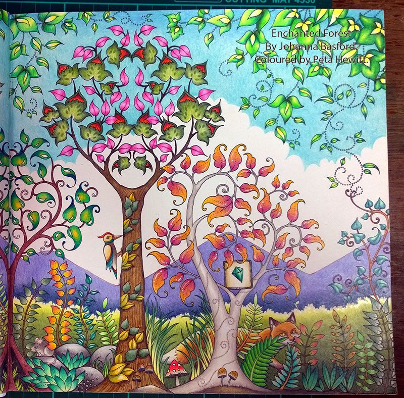 Johanna Basfords Enchanted Forest Stages In Coloring The Day