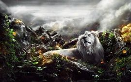 Wallpapers HD: Jungle Lion