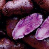 How to Grow Potatoes #Grow #Potatoes #growingpotatoes