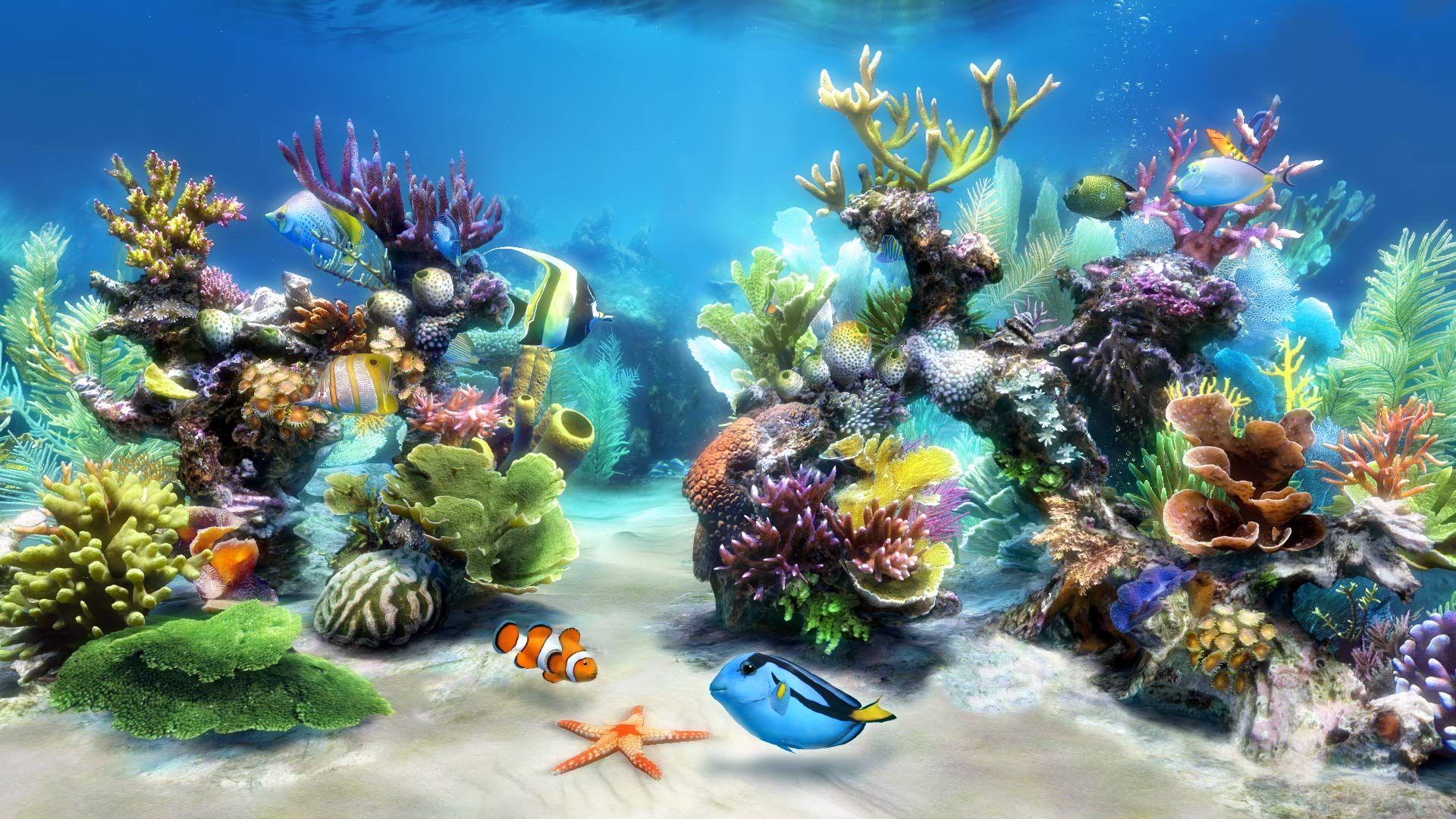 Aquarium live wallpaper ...