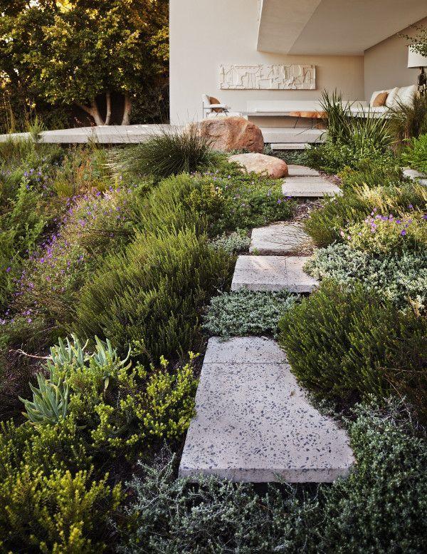 South African Residence In Cape Town Has A Surprinsing Garden Sloped Garden Modern Landscaping Landscape Design