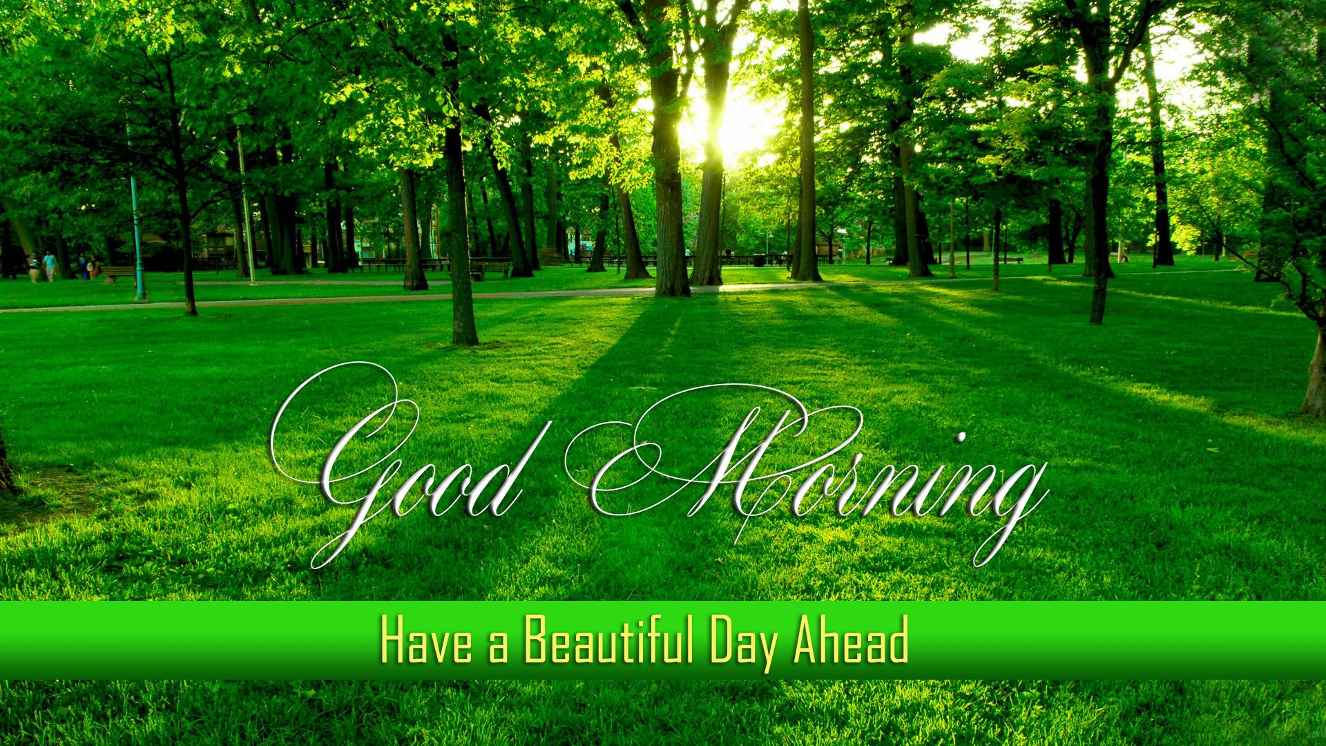 download good morning images wallpapers pictures photos wishes sms cards