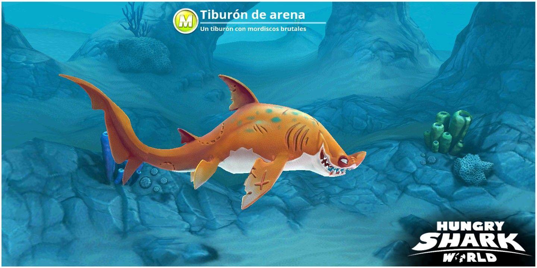 Pin By Paulo Rojo On Tiburones Shark Fish Pet Animals