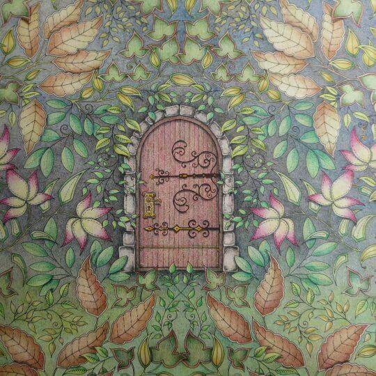 Archive 402 Johanna Basford Colouring Gallery Secret Garden Colouring Secret Garden Coloring Book Enchanted Forest Coloring Book