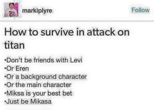 It has to be Levi and Mikasa or nothing!