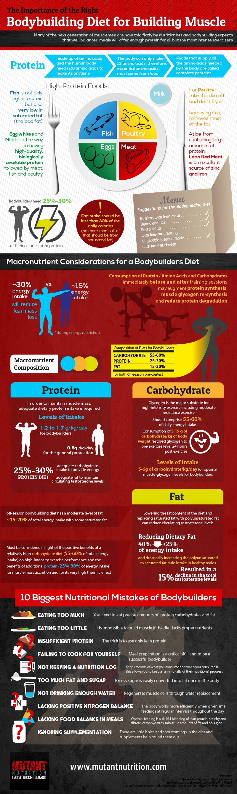 This is an infographic on the importance of the right bodybuilding diet for building muscle. Protein is made up of amino acids and the human body needs 20 amino acids to make its proteins.