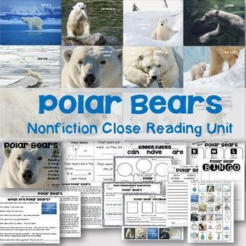 Polar Bears are fascinating animals! Perfect for winter study, this Common Core aligned nonfiction unit will introduce close reading to your young students while growing their schema and vocabulary simultaneously. Show the slideshow to students first- be