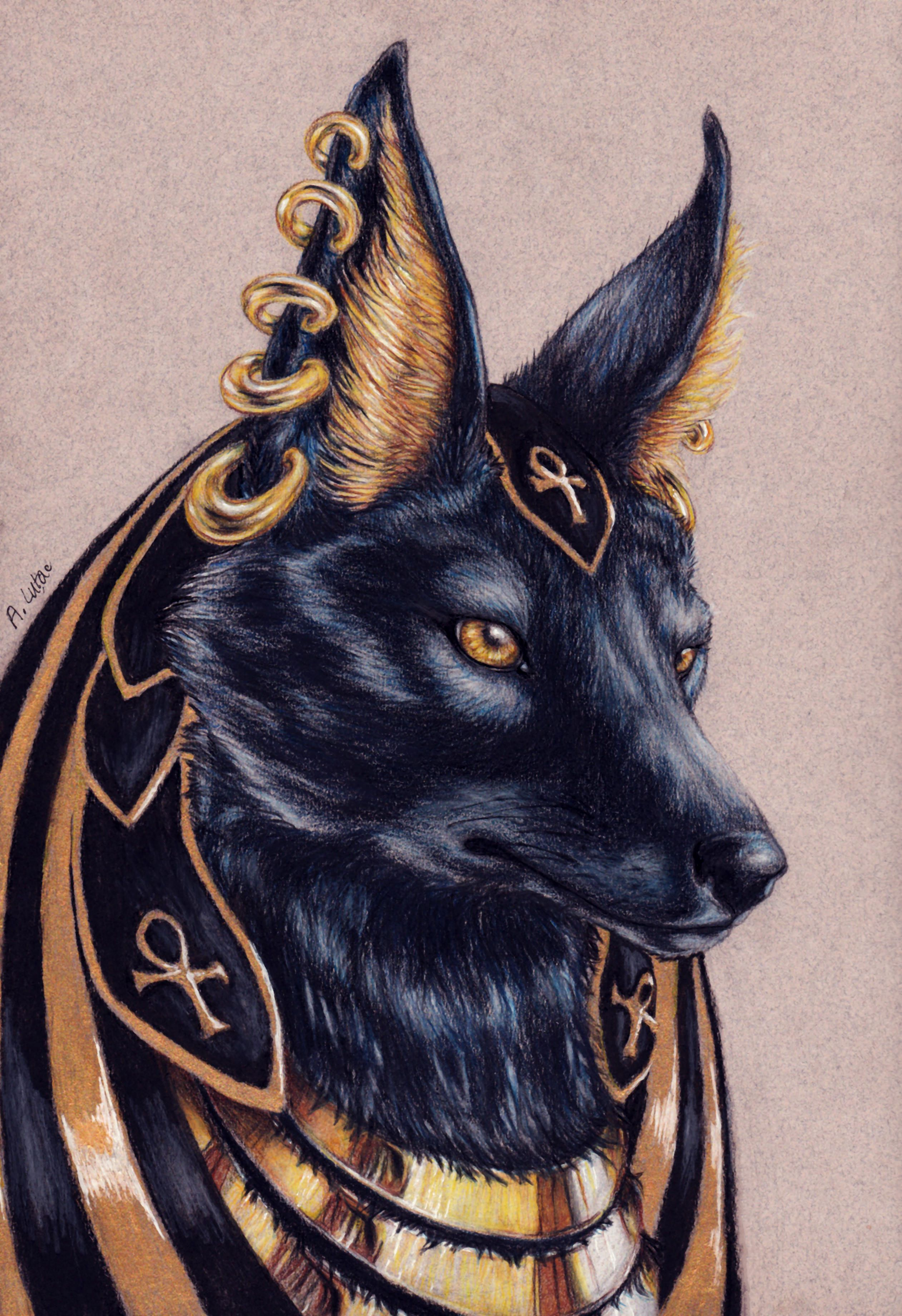 Pin by May Stevens on Abi's Art in 2019 | Anubis, Anubis