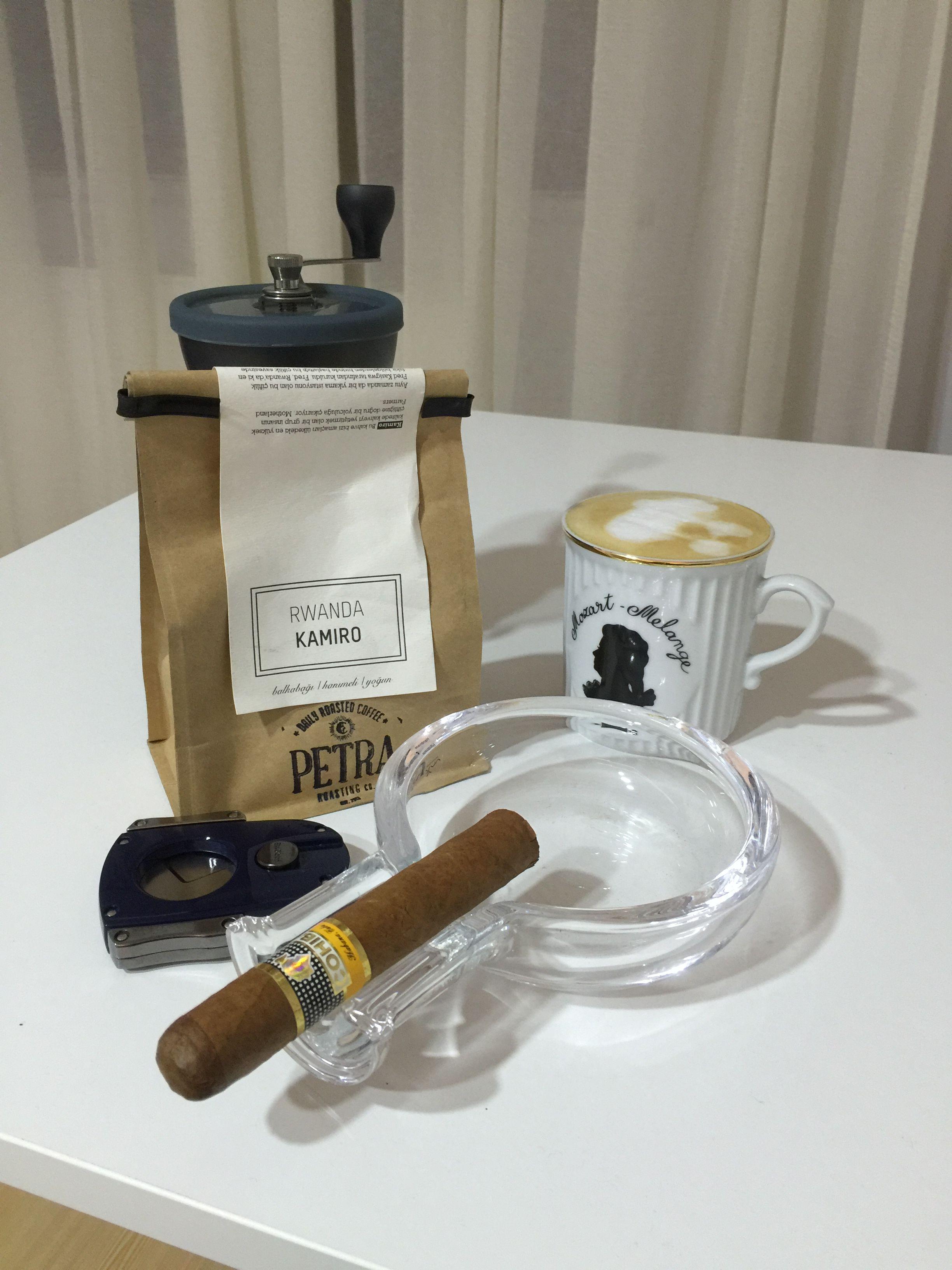 Cohiba Robusto purosever cigar cigarlife sarome hario