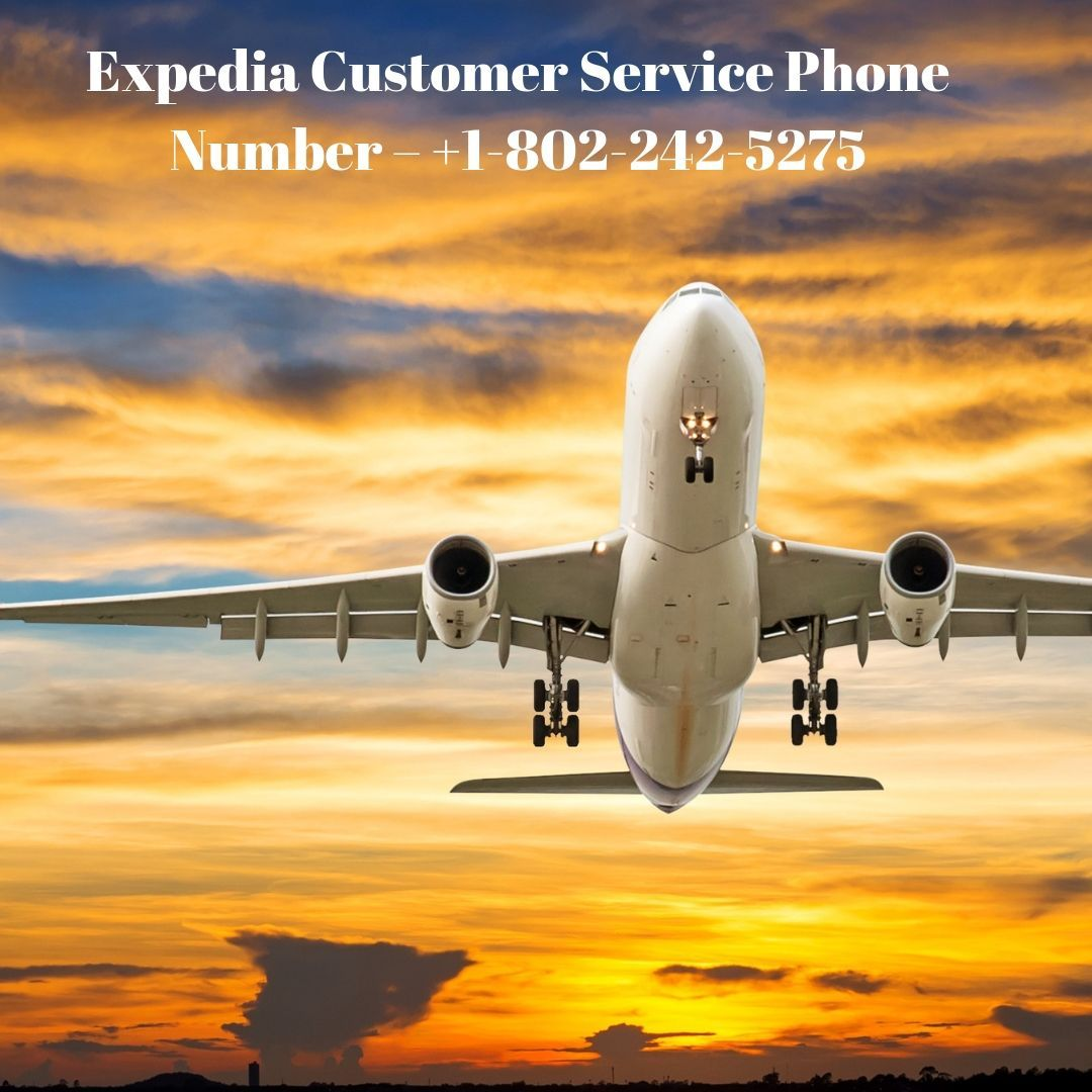 Expedia Customer Service Phone Number +18557890251