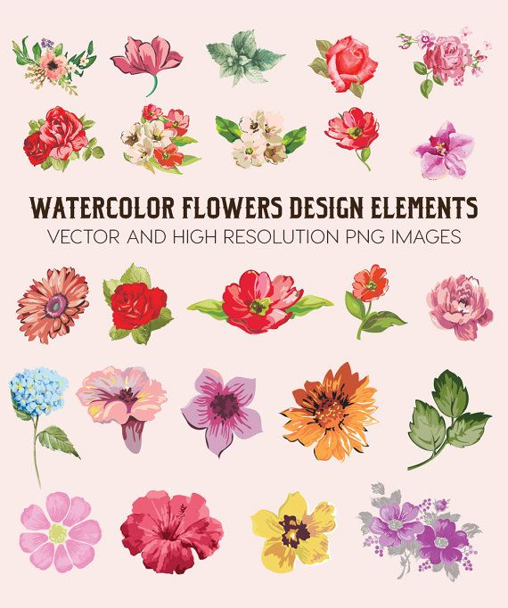 Watercolor Flower Clipart Flower Watercolor Clipart Watercolor