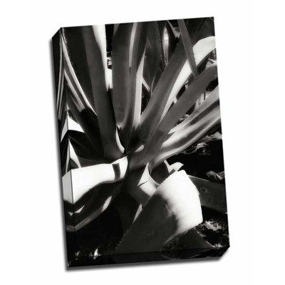 Picture it on Canvas 'Shapes and Shadows III' Photographic Print Wrapped Canvas